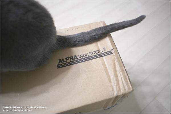 공홈에서 구입했더니 알파 박스에 담겨서 배송-
